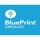 BluePrint student discount